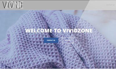 Разработка лендинга для компании Vividzone